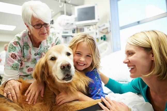 pet-therapy-program.jpg